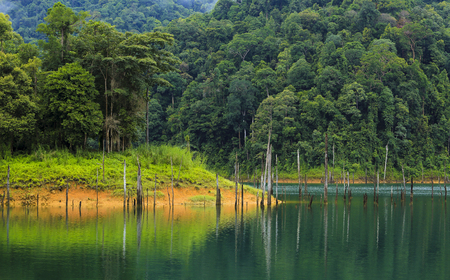 A beautiful rainforest scene at Kenyir Lake, Terengganu, Malaysia. Also known as Tasik Kenyir, it is the largest man-made lake in South East Asia with an area of 260,000 hectares.