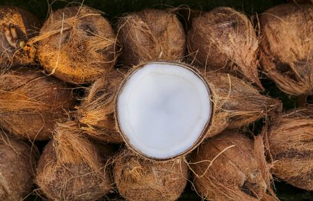 Pile of ripe coconuts. A tropical fruit, coconuts are known for their versatility of uses, ranging from food to cosmetics.