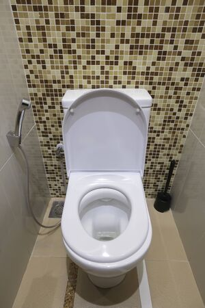 White toilet bowl and handheld bidet spray in a modern bathroom.