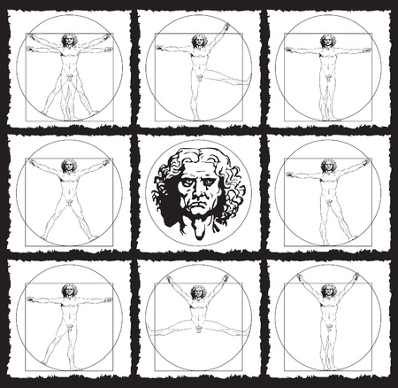 proportions of man: human anatomy drawings Illustration
