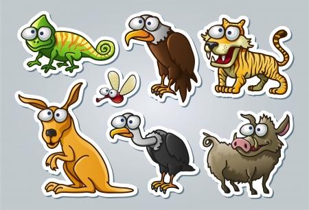 vulture: illustrated animals Illustration