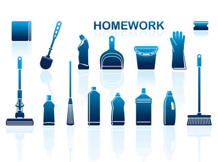 Icons of accessories and means for cleaning Vector