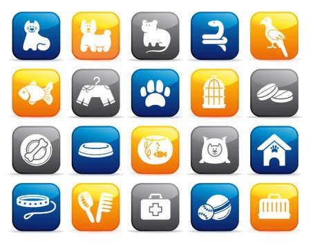 háziállat: Háziállat ellátás icon set gombok Illusztráció