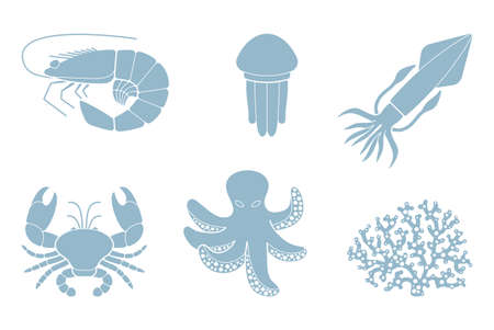 and marine life: Marine life Illustration