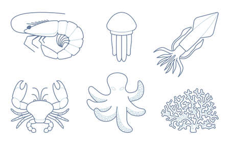creatures: The outlines of sea creatures