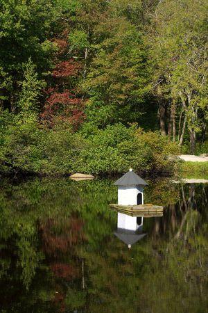 Cape Ann lake in early autumn