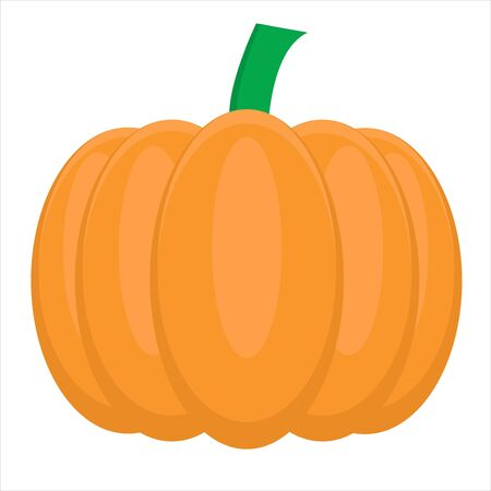 Pumpkin vector ilustration can be used for business