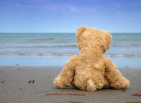 Teddy dreaming of Love - Alone, Desperate and Broken-Hearted Stock Photo