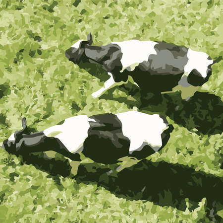 pastoral: Vector Fresian Cattle on A Grassy Background