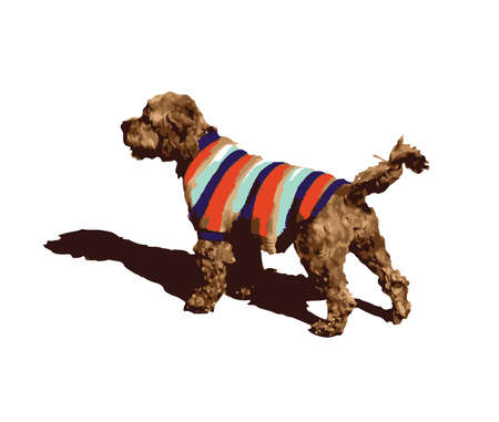 Cute Vector Illustration Brown Terrier Coloured Knitted Coat