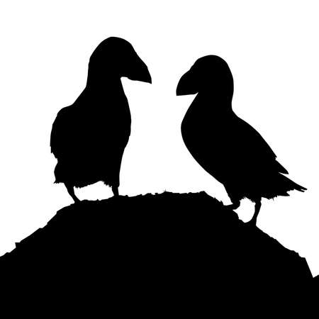 puffins: Puffins Vector Silhouette Illustration Illustration