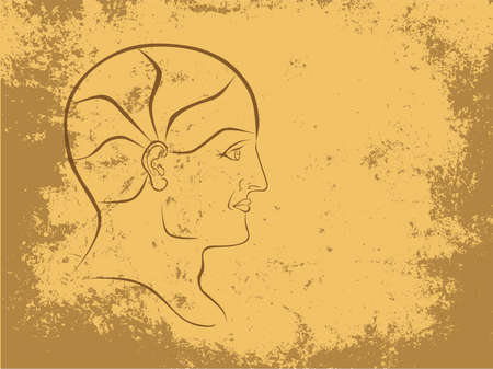 neuroscience: Vector Phrenology Head Sepia Outline Landscape Format