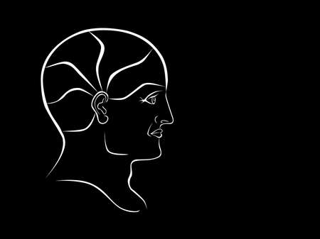 psychiatry: Vector Phrenology Head White Outline Landscape Format Illustration