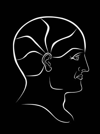 Vector Phrenology Head White  Outline with 5 Brain Sectors