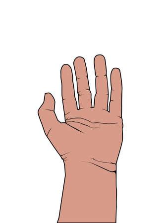 dedo meÑique: High Five Finger Ilustración de la mano Comunicación
