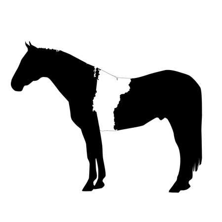 Vector Horse Silhouette with Vermont Patch Illustration Ilustração