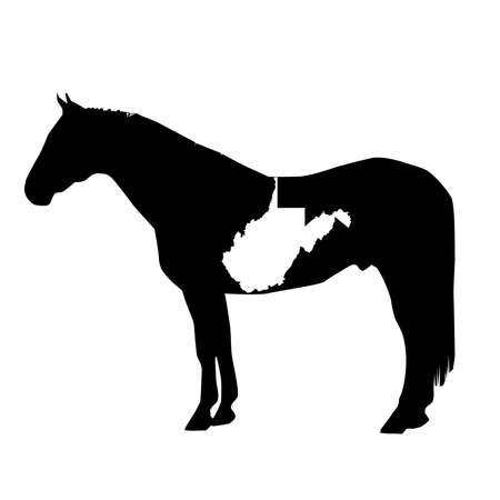 Vector Horse Silhouette with West Virginia Patch Illustration Ilustração