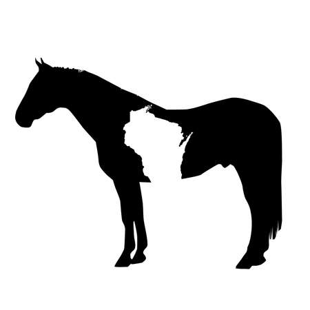 Vector Horse Silhouette with Wisconsin Patch Illustration Vettoriali