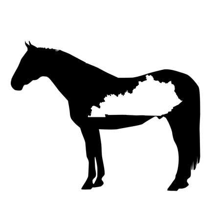 Vector Horse Silhouette with Kentucky Patch Illustration Ilustração