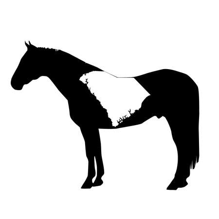 Vector Horse Silhouette with South Carolina Patch Illustration Vettoriali