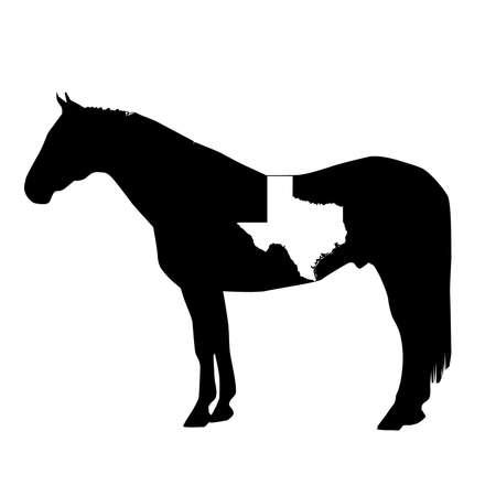 Vector Horse Silhouette with Texas Patch Illustration Ilustração