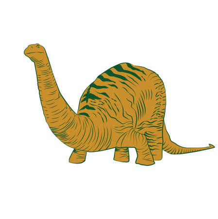 Vector - Apatosaurus Line Drawing Sketch Orange Ilustração