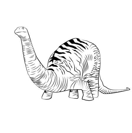 Vector - Apatosaurus Line Drawing Sketch Illustration