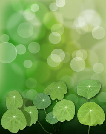 cress watercress nasturtium leaves green nature background