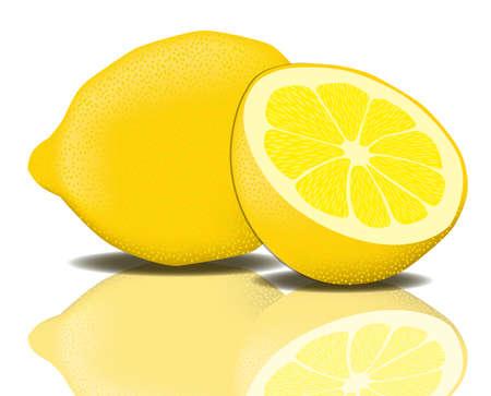 Lemon Vector Lemon Citrus Fruit South Mediterranean Sour
