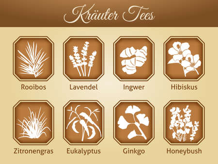 Illustration of different tea varieties as vector