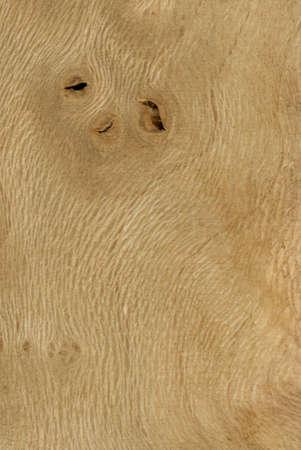 plane Wood tree pattern samples natural rural timber 免版税图像