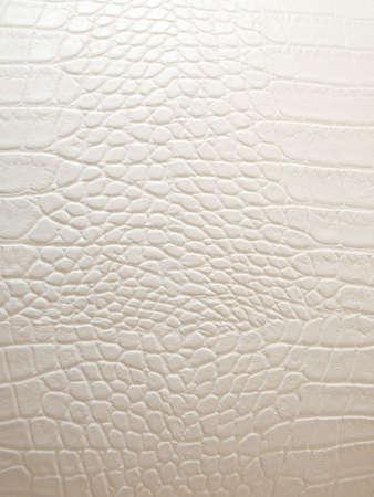 Textur weiß Krokodil-Leder