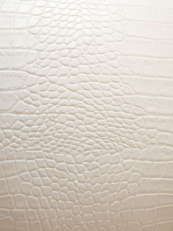 Texture of white crocodile leather Stock Photo