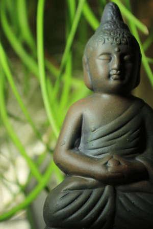 mindfulness: Boeddha in de voorkant van groene bladeren (Zen-tuin)  Stockfoto