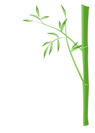 Illustration of a green bamboo stick Illustration