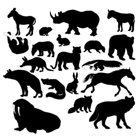 racoon: Silhouettes of wildlife animals Illustration