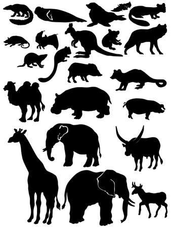 outlined isolated: Siluetas de animales de la fauna silvestre