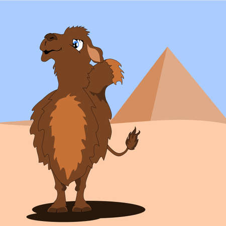 Camel in a desert with pyramid Vector
