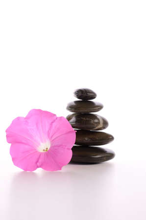Stacked stones with a pink flower on a white background photo