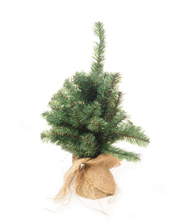 plastic christmas tree: Plastic Christmas tree in a canvas bag on a white background