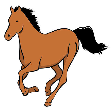 brown horse: Illustration of a wild brown horse on a white background