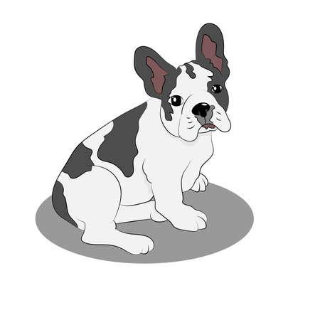 Cute French Bulldog puppy sitting on the floor, vector illustration Illustration