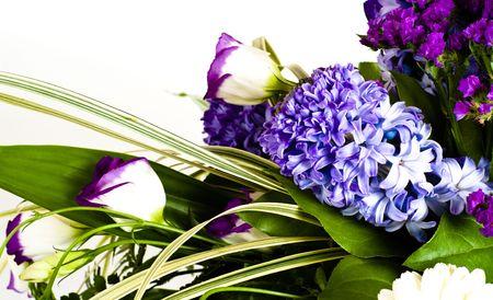 hyacinthus: blue fuzzy (hyacinthus orientalis) bouquet isolated on white