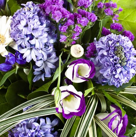 hyacinthus: blue fuzzy (hyacinthus orientalis) bouquet closeup