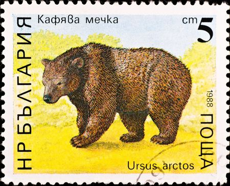 BULGARIA - CIRCA 1988: postage stamp shows brown bear, circa 1988 Stock Photo - 6524617