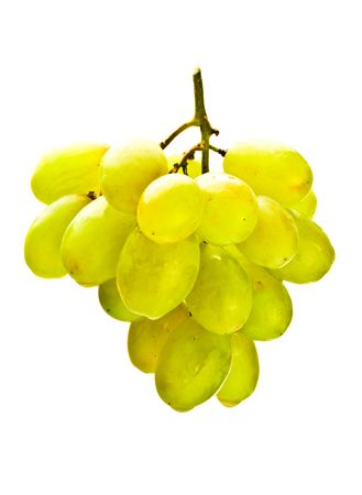hanging bunch of white grape isolated on white Stock Photo