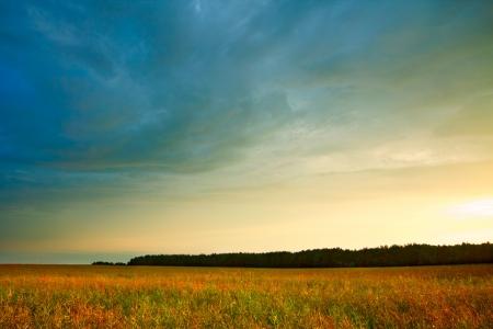 horizonte: paisaje de verano con hayfield y nubes de tormenta Foto de archivo