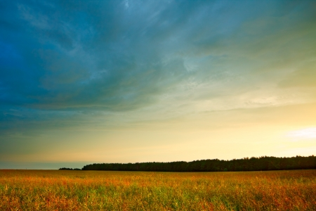 summer landscape with hayfield and storm clouds photo