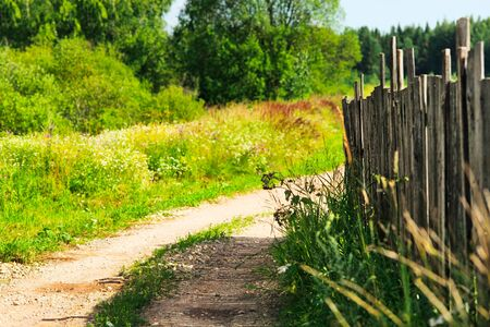 countryside road near old wooden fence at summer day photo