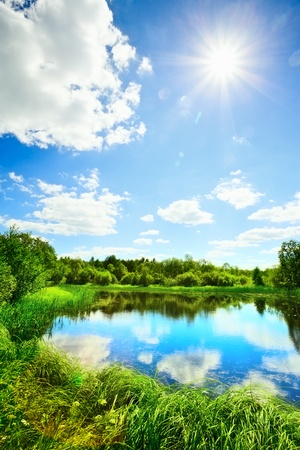 summer landscape with lake at sunny day